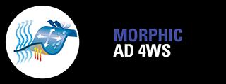 T MORPHIC AD 4WS